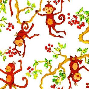 Monkeys Tree