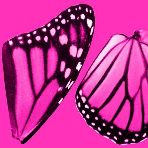 pinkmonarch