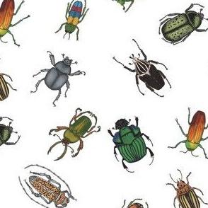 Beetle Fabric