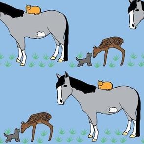 Cat Friends in the Grass