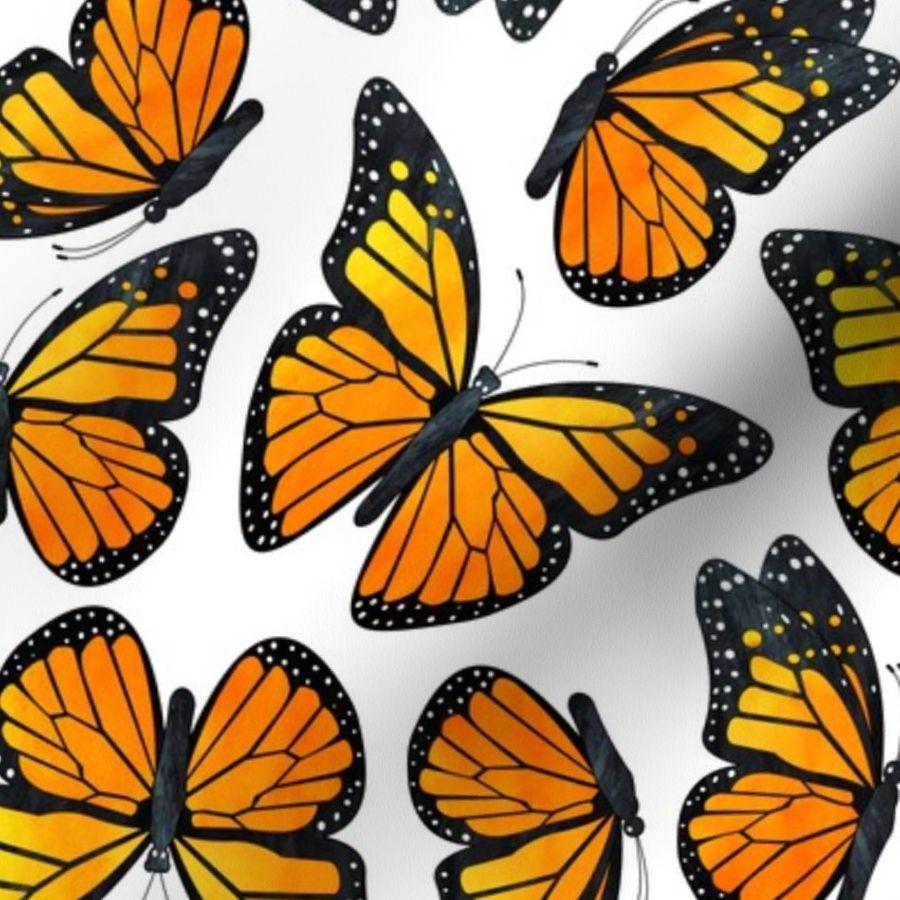 monarch butterfly pumpkin carving pattern furniture ideas rh bargaincenter store