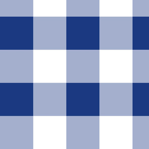 Willow Ware Blue and White Gingham with Savoy Blue