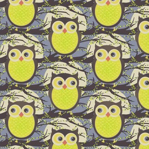 Night  Owl_R01.01a