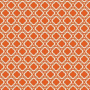 Orange Clover Flowers