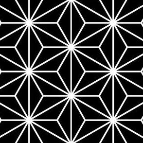 05016483 : SC3C : black + white
