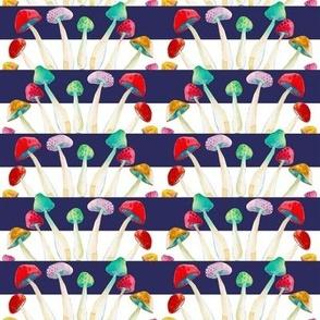 Wild Mushrooms on Classic Blue Stripe