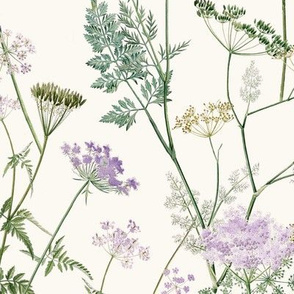 Queen Anne's Lace - Lilac