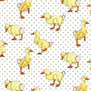 Ducklings on dots