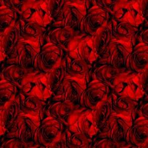 Blood Roses, Blood Roses ~ Medium