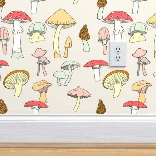 Hand Drawn Mushrooms In Color Spoonflower