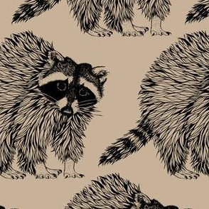 Raccoon Stone