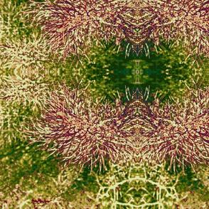 fennel 3, bronze fennel mirrored