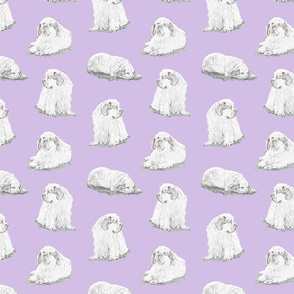 Relaxing Clumber spaniels - purple