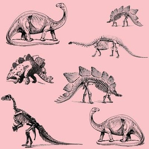 Museum Animals, Dinosaur Skeletons, Black and Light Pink