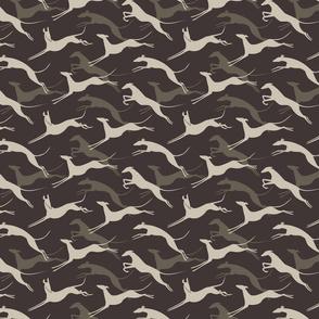 jumping greys grey