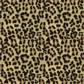 ©2011 leopard print