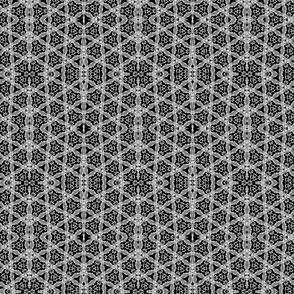 complex fishnet