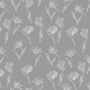 white_tulips_on_grey