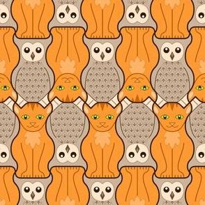 05048414 © owl + pussy cat : O+N