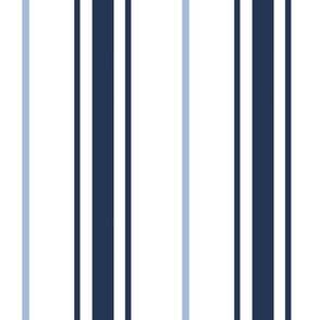 Blue Stripe Navy Stripe Carolina Blue Stripe Preppy Ticking