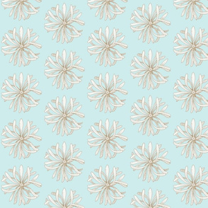 chrysanthemum on pale aqua
