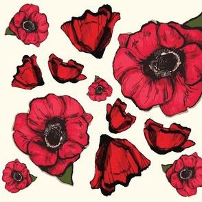 Romance of the poppy