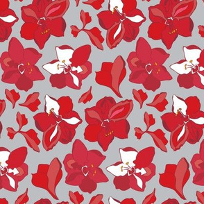 15-03A Christmas Red Winter Amaryllis Floral || White gray Grey  Christmas Flower Wine Large Scale blooms _Miss Chiff Designs
