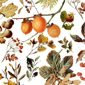 vintage botanical autumn