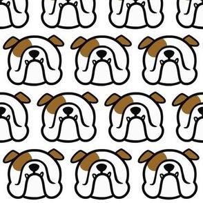English Bulldog in white & brown - Bully love pattern