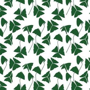 Shamrocks Green on White