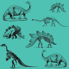 Museum Animals | Dinosaur Skeletons on Teal Green