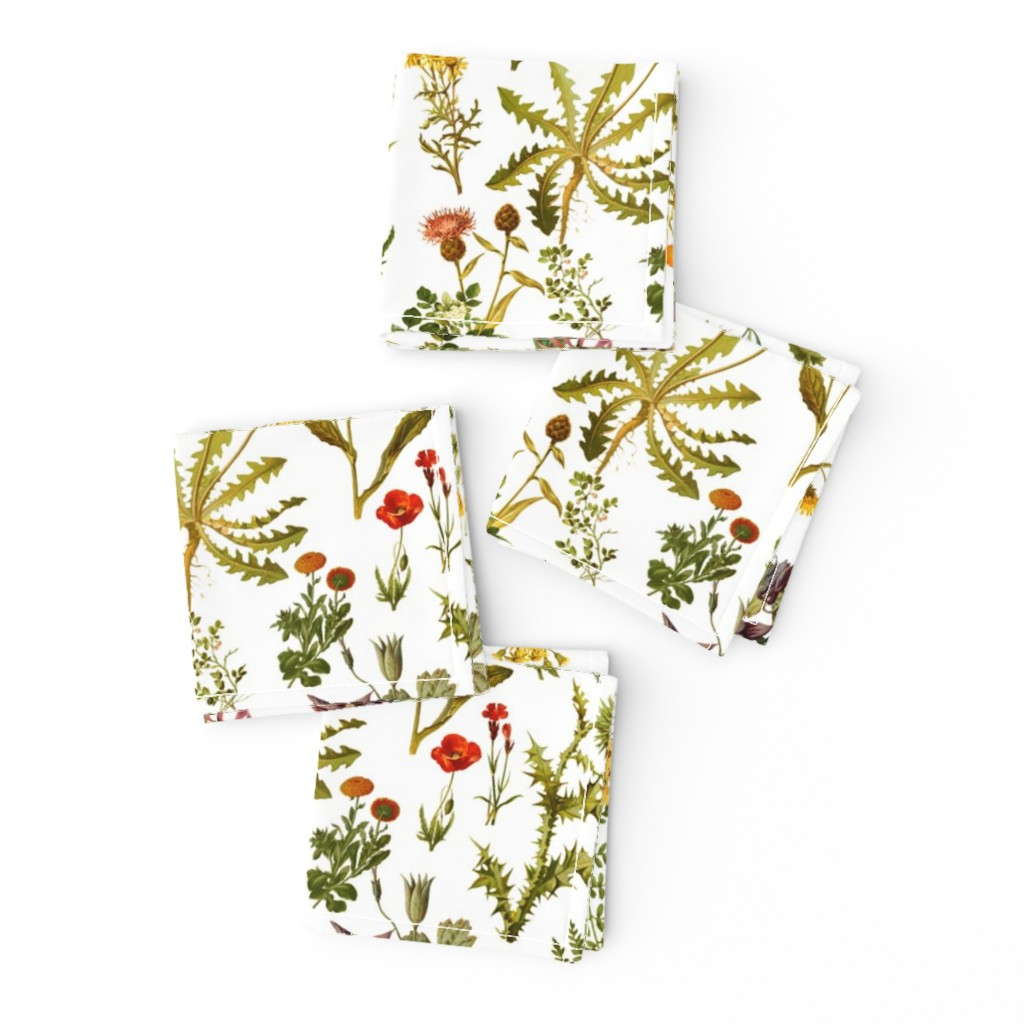 Frizzle Cocktail Napkins featuring vintage botanical wildflowers-small by redbriarstudio