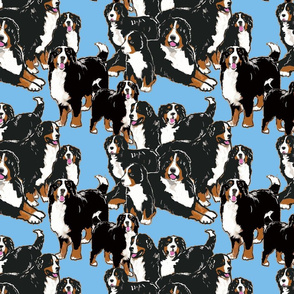 bernese Mountain dog mural fabric-ch