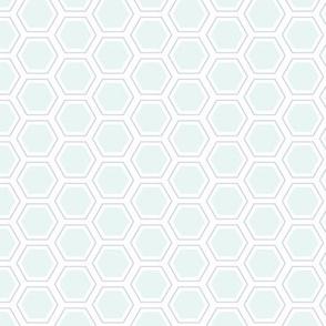 Technicolor Hexagon