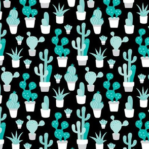 Cactus garden and succulent cacti plants for summer cool scandinavian style gender neutral blue black