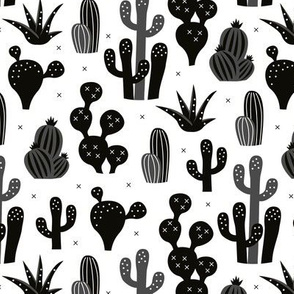 Cactus garden and succulent cacti plants for summer cool scandinavian style gender neutral black and white