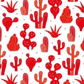 Cactus summer garden and succulent cacti plants for summer cool scandinavian style gender neutral red