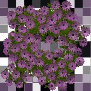 Purple Aster Wreath