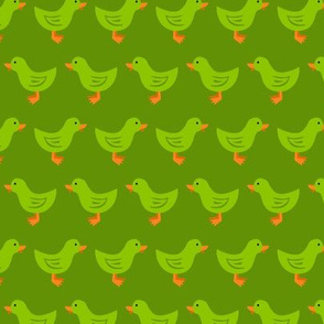 Ducks in a Row (Green)