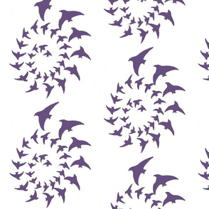 swallow-spiral