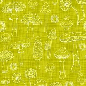 Champignons Verts