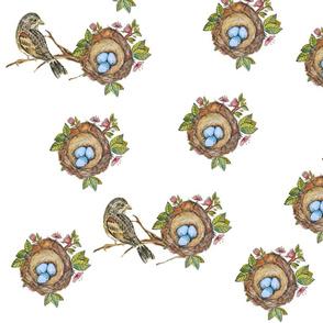 Bird_branch_and_nest_white