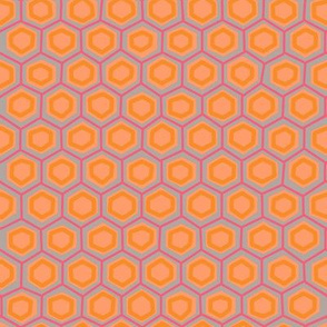 Hex lines in peach + berry