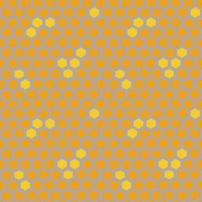 Hex spots honeycomb in honey
