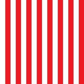 Danita's Red & White Stripe Vertical