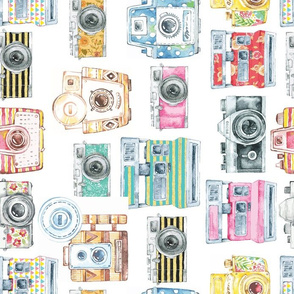 Watercolor Cameras - Large, different direction