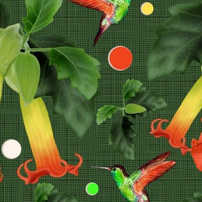 Colibri&Brugmansia