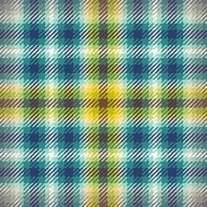 05168393 : tartan : trendy2