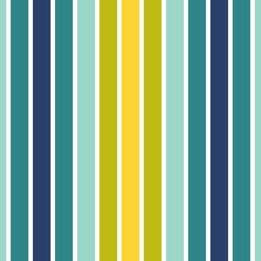 05169755 : pinstripe : trendy2