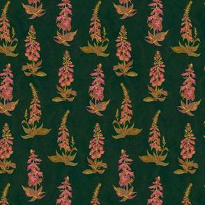 Woodland Foxgloves